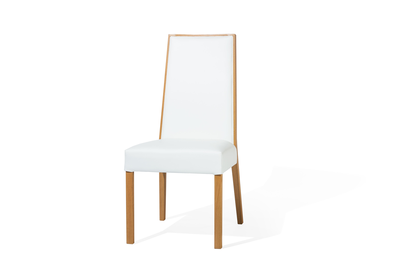 Charmant Stühle Im Modernen Design